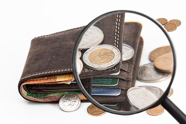 peněženka pod lupou